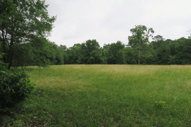 Halstead Factory & Mound X