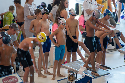 State Swim Meet July 2017