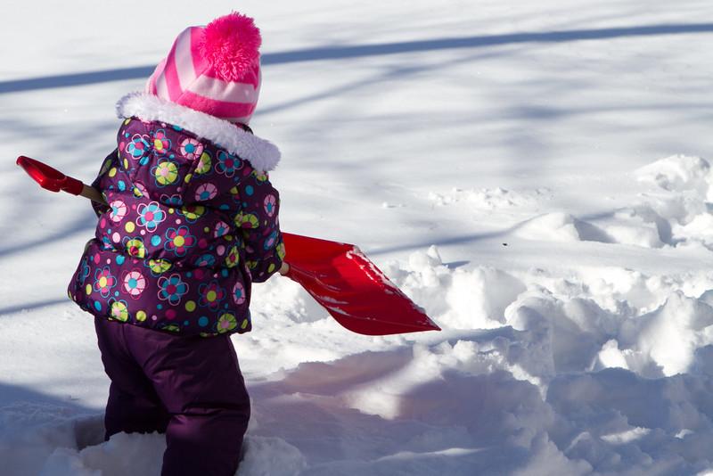 Snow2014-1.jpg