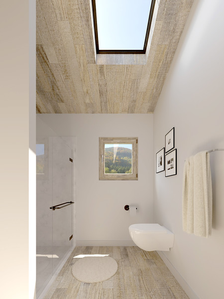 velux-gallery-bathroom-196.jpg