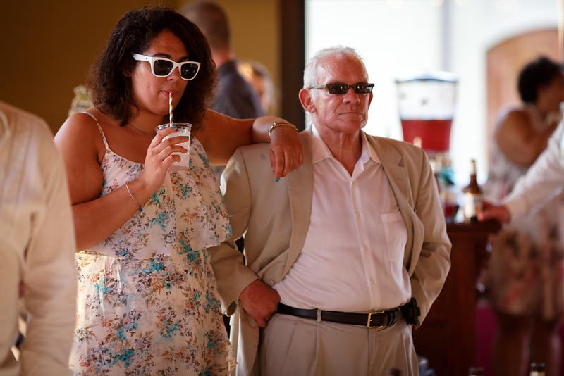 South Beloit, IL July 2016 DC Estate Winery Wedding