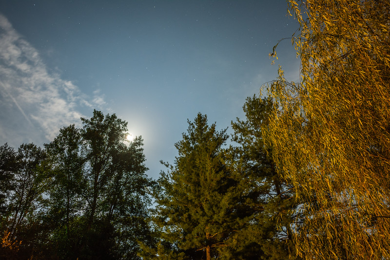 The night sky seen from Deep Creek in Bryson City, September 22, 2018. (Joseph Forzano / Deep Creek Films)