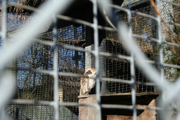 2007 - Quogue Wildlife Refuge