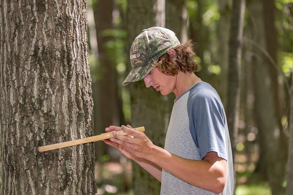 College of Natural Resources Summer Program