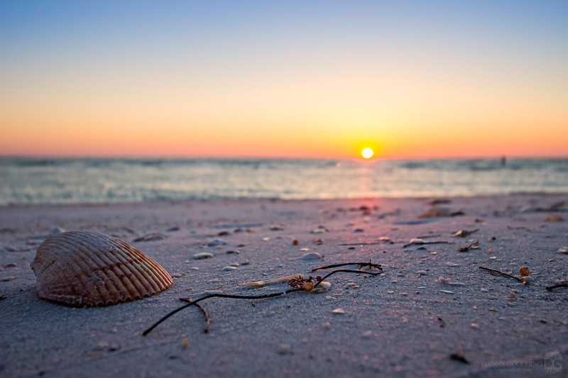 Sunset at Shell Island Preserve near Fort De Soto