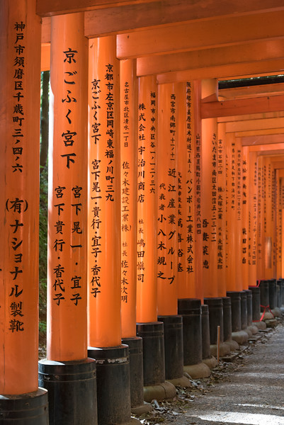 Path lined with torii gates at Fushimi Inari-taisha Shrine, Kyoto, Japan