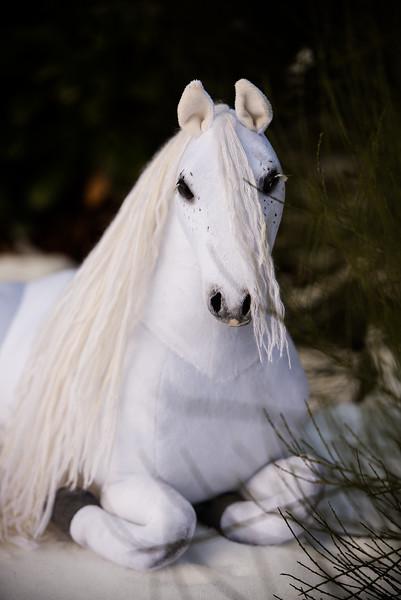 Ekaterinas Ponies