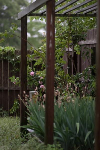 04/22/2012 - Rainy day