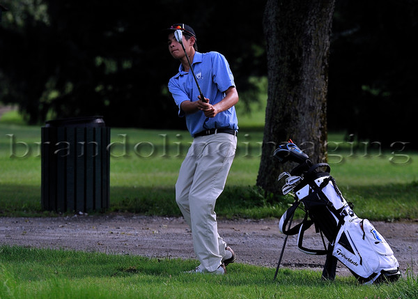 Lincoln-Way East Varsity Men's Golf 2016