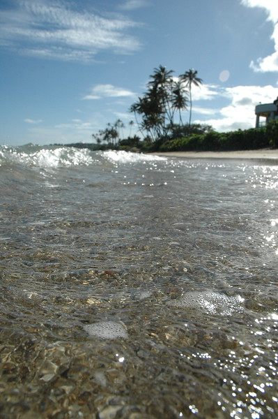 Hawaii - Kahala Beach-62.JPG