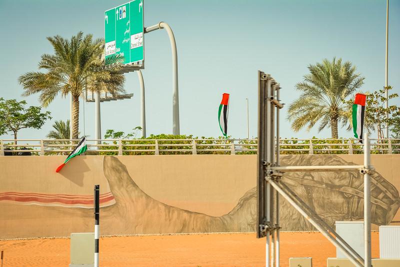 Abu Dhabi-99.jpg