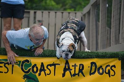Ultimate Air Dogs Regional Qualifier Bradenton FL
