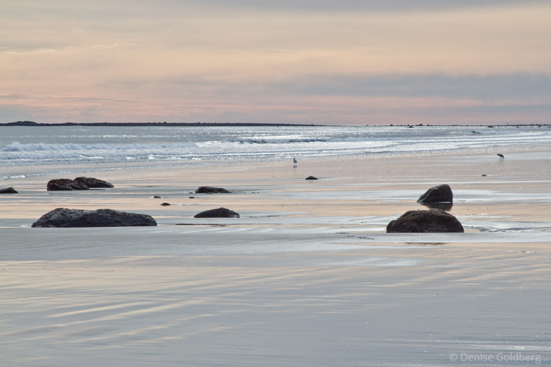 a bit of pink, near low tide at Jenness State Beach, Rye, NH