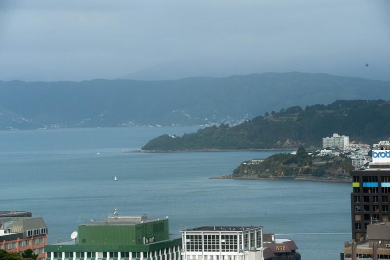 Wellington5626.jpg