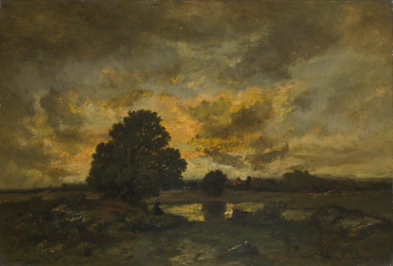 Common with Stormy Sunset