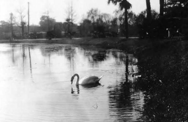 1928-Springfield Park.jpg