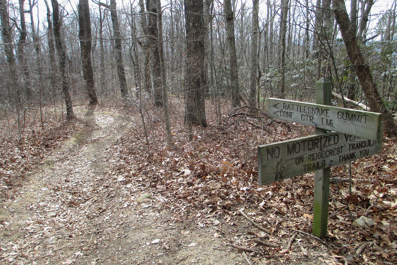 Old Mitchell Toll Road-Rattlesnake Trail Junction