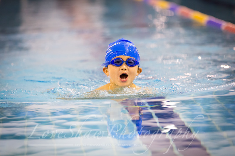 HWI Swim Meet 10th Dec 2016-174