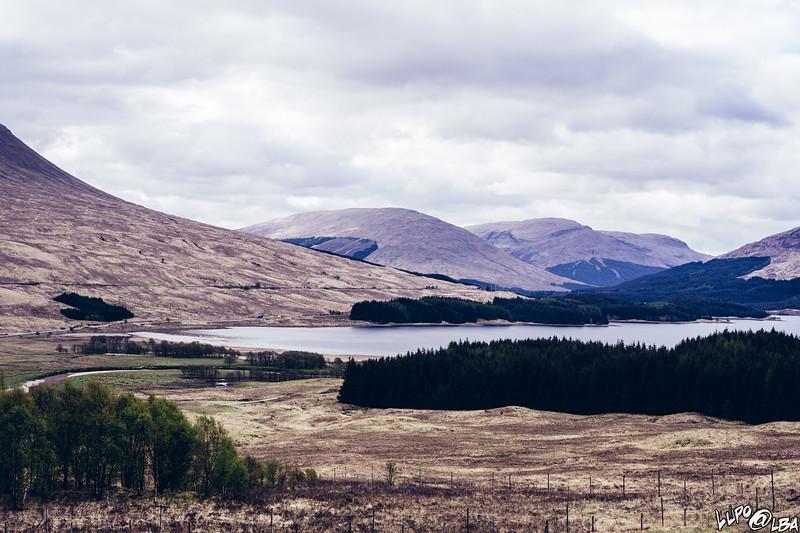 Scozia2019-1542.jpg