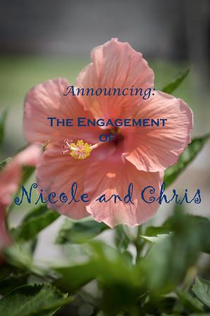 Nicole and Chris - Engaged!