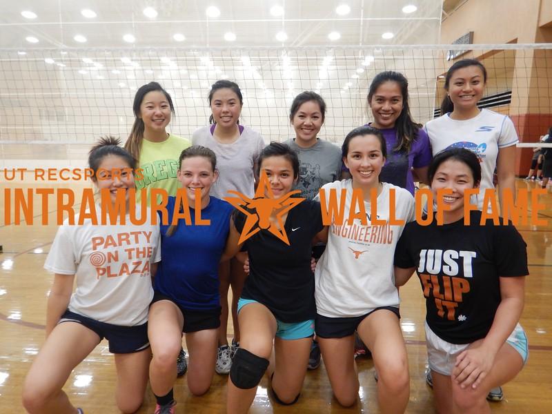 Fall 2015 Volleyball Women's A Runner Up Big Digs