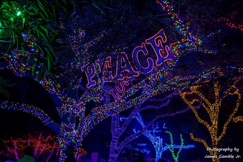 Houston-Zoo-Lights-3032.jpg