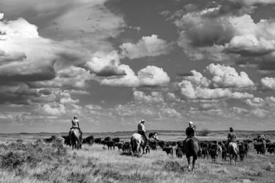 2019 Wyoming Trip