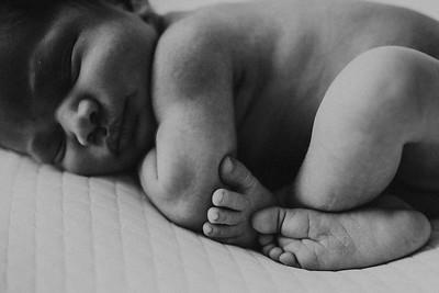 Mateo Newborn Session