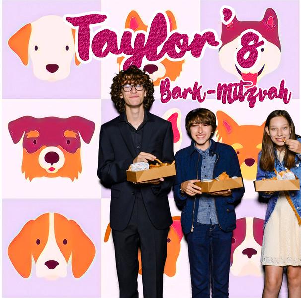 Taylors pawmitzvah-20735.jpg
