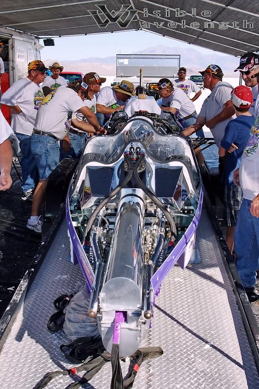 Royal Purple998