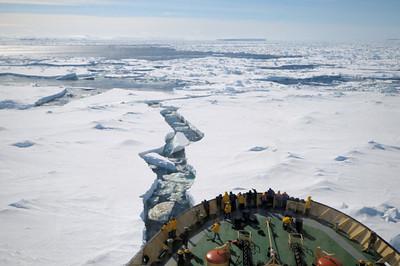 weddell sea (11-2009)