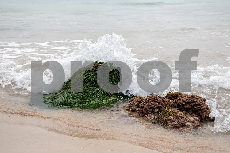 Seal rocks boat beach 1 copy.JPG