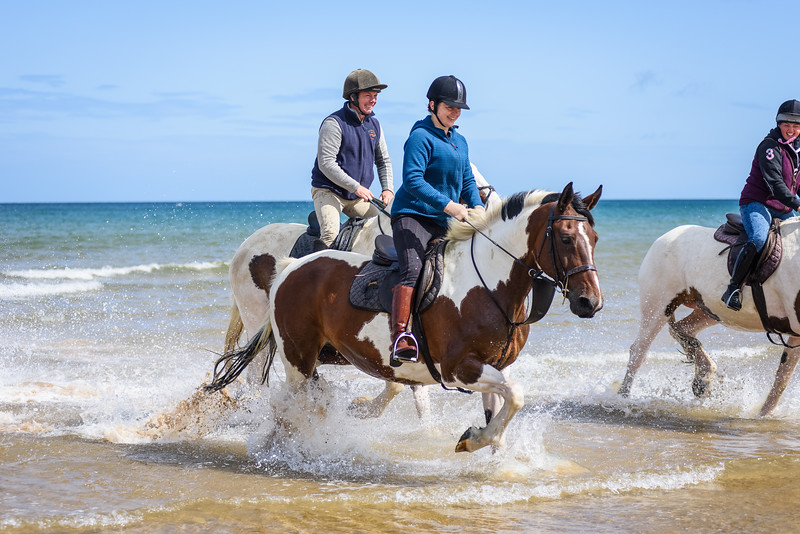 Holkham Beach Ride August 2019 (59).jpg