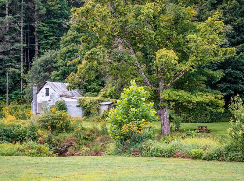 52 Aug 25 Old House at Big Horse Creek Lansing-1.jpg