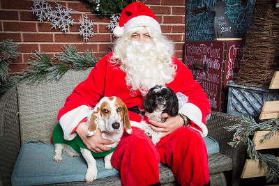 Santa Paws 2017 Pet Wants Fort Thomas