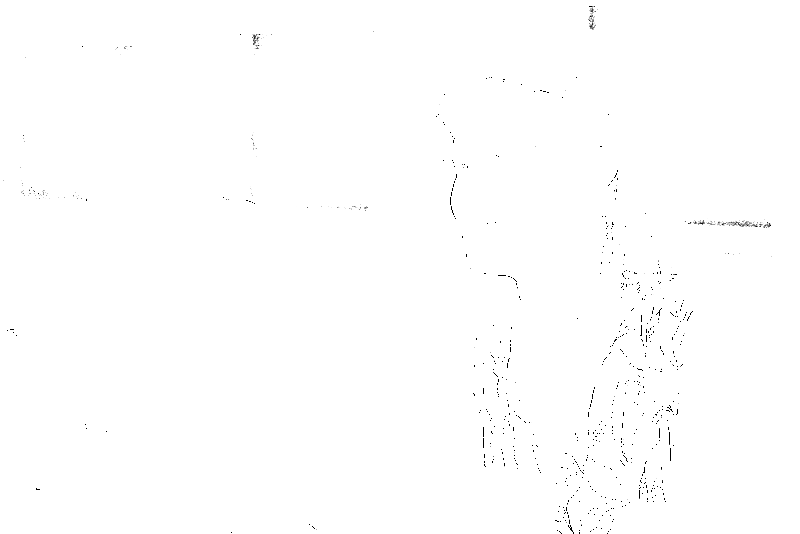 DSC09182.png