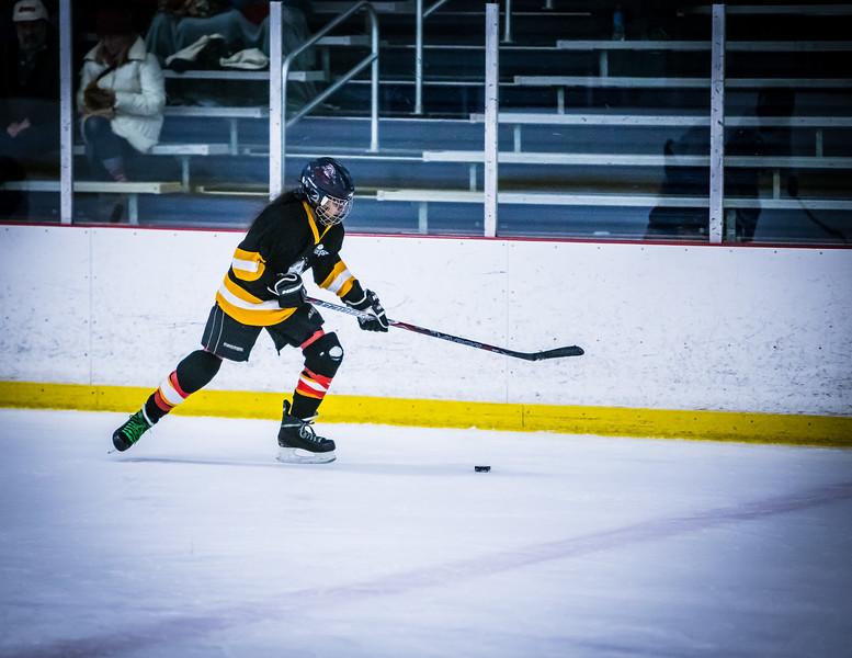 Bruins2-398.jpg