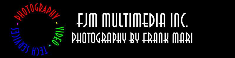 FJM logo design 1 2010_1113 final copy.jpg