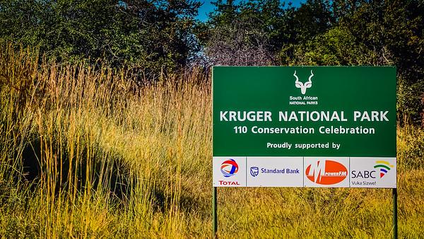 Kruger Park 2009