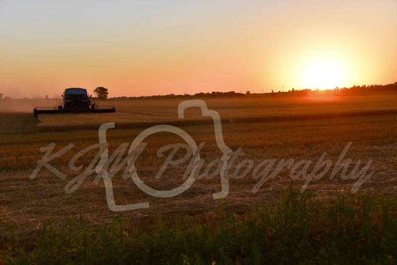 2018 Kansas Wheat Harvest