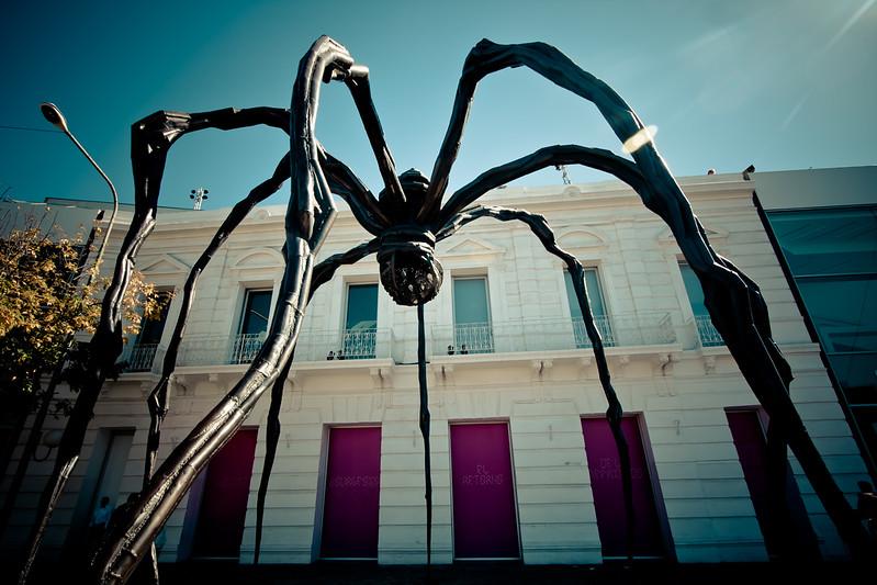 boca-giant-spider_5685200803_o.jpg