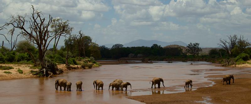 Kenyan Landscapes