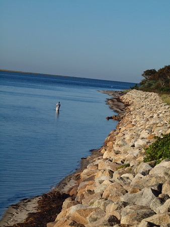 Chatham MA Landscapes and Wildlife