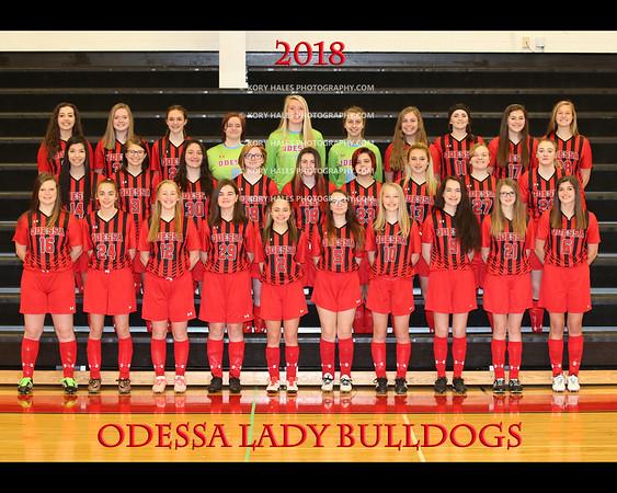 2018 OHS Girls Soccer