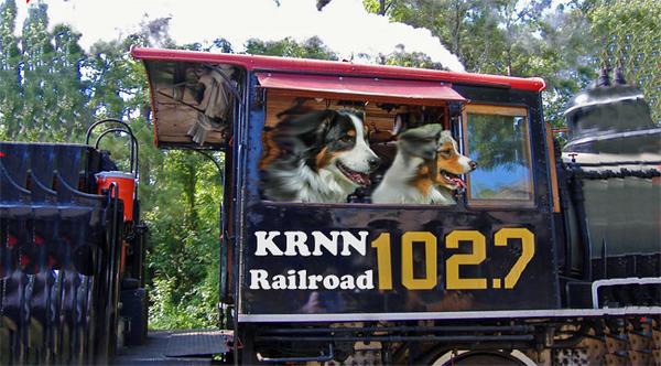 locomotiveSteam.GaWy-650x360.jpg