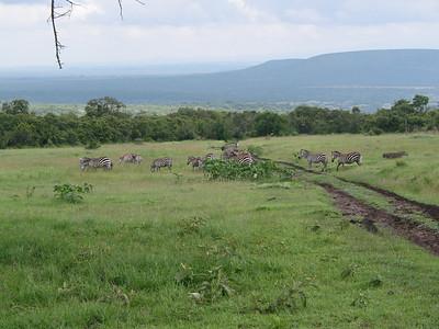 Africa: Exploring