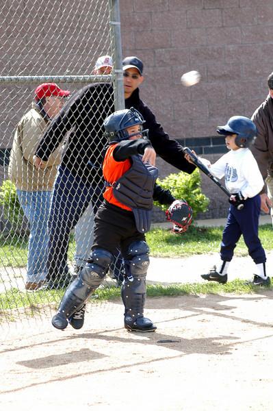 Tiger Baseball May 2008