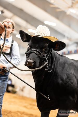 2021 Texas Invitational, Bryan, TX