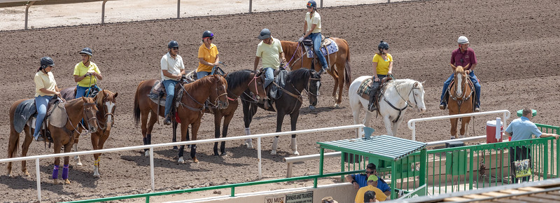 Turf Paradise Last Day of Season 5 May 2019