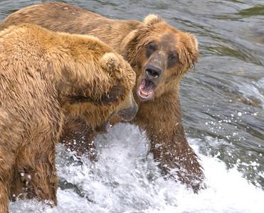 Alaska 2007